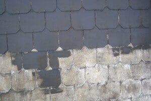Démoussage et hydrofuge toiture entreprise